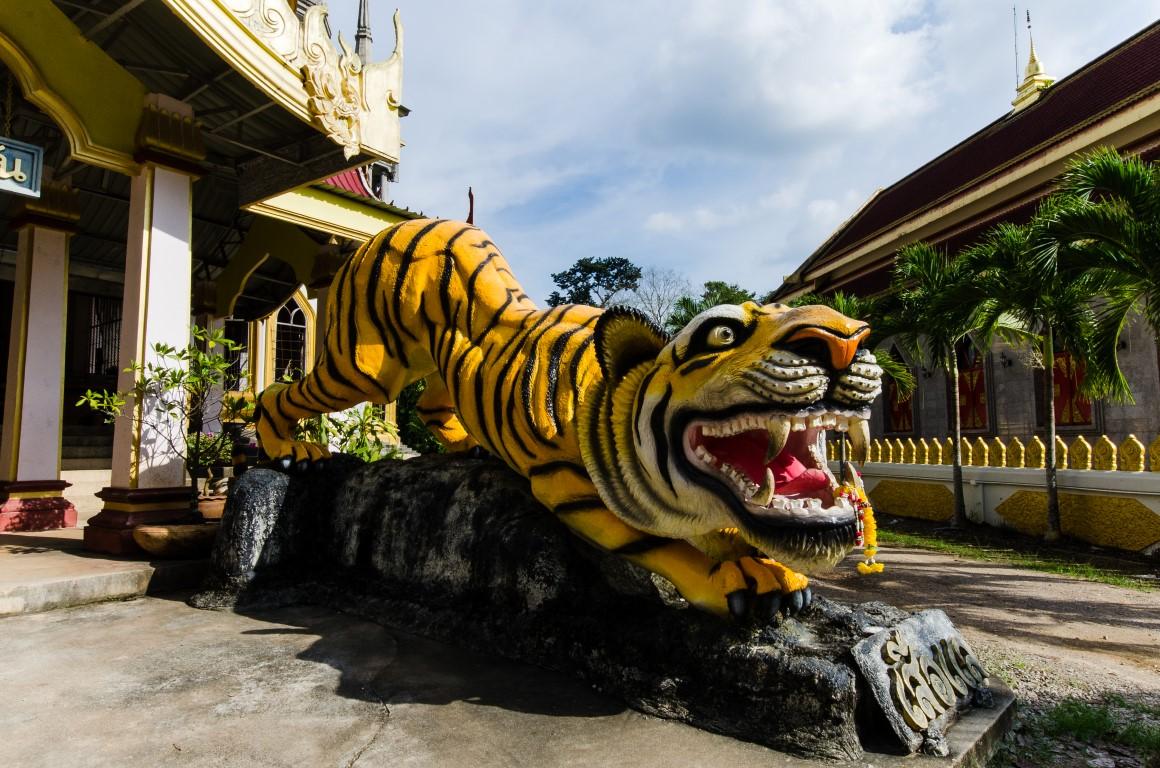 Tiger_Cave6